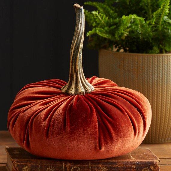 velvet pumpkin with stem